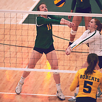 4th year right side hitter, Haley Wagar (11) of the Regina Cougars during the Women's Volleyball home game on Sat Jan 19 at Centre for Kinesiology, Health & Sport. Credit: Arthur Ward/Arthur Images