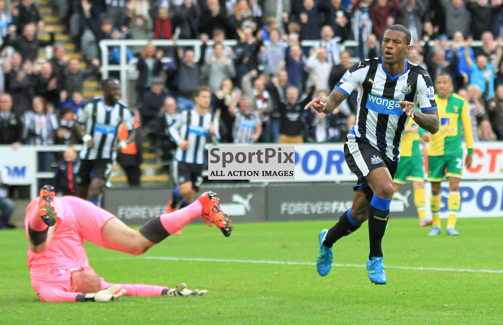 Newcastle United V Norwich City Premier League 18th October 2015;  Georginio Wijnaldum (Newcastle, 5) celebrates putting his side 2-0 up  during the Newcastle V Norwich match, played at St. James Park, Newcastle.