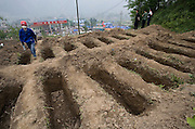Rows of empty graves await bodies still being excavated in the wreckage of Hongbai Village.