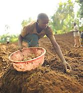 14. Rwanda Potato Farmers