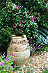Greek style amphora pot with Clematis 'Etoile Violette' behind. Design: Anthony Goff