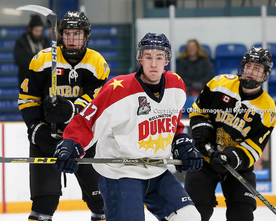TRENTON, ON - JAN 24,  2017: Ontario Junior Hockey League action game between Aurora and Wellington at the 2017 Winter Showcase, Colin Doyle #17 of the Wellington Dukes during the second period<br /> (Photo by Amy Deroche / OJHL Images)