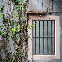 Window in Ninh Binh, Vietnam.