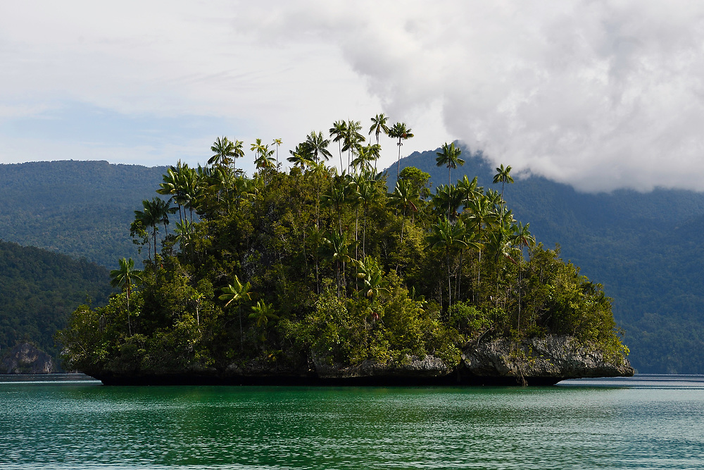 "Karst island archipelago, Triton Bay, Mainland New Guinea, Western Papua, Indonesian controlled New Guinea, on the Science et Images ""Expedition Papua, in the footsteps of Wallace"", by Iris Foundation"