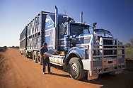 Cattle Roadtrain.Stuart Highway.near Marla.South Australia.Australia