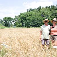 Ami Gignac and Tim Fox are partners in grain at organic farm Breakneck Acres in Ravenna, Ohio.