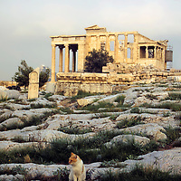 Europe, Greece, Athens. The Erechtheum buildling of the Acropolis in Athens, c. 430-460 BC.