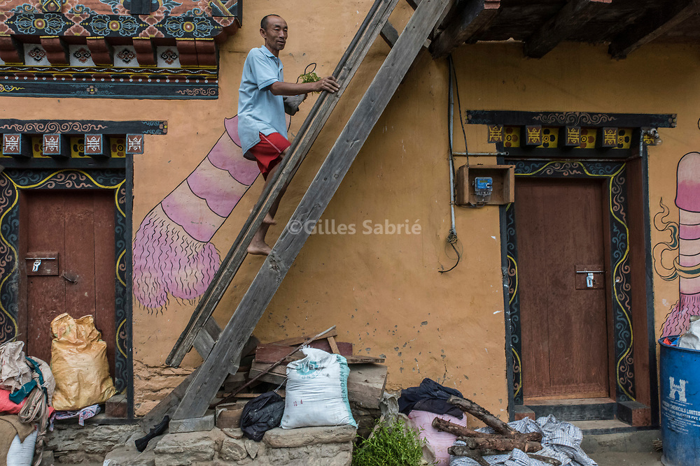 For a story by Steven Lee Myers, Bhutan<br /> Lobesa, Bhutan, August 2nd, 2017<br /> Lothay Tshering owner of a house adorned with large phalluses paintings, climbing up the staircase to his home. Locals believe that the phallic symbols bring good luck and drives away evil spirits, Its origin can be found in the Bon religion that predated the advent of Tibetan Buddhism. Phallus representations are also linked to the XVIth century Lama Drukpa Kunley  popularly known as the &ldquo;Divine Madman&rdquo; for his unorthodox ways of teaching, and for his bizarre and shocking behaviours.<br /> Gilles Sabri&eacute; pour The New York Times