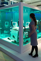 London, September 29 2017. A woman admires Damien Hirst's 'Love Lost' from 1999, featuring 20 live carp in one of the artists signature vitrines, expected to fetch between £1.2-1.8million at Christie's in London during their post war and contemporary art sale on 6th October 2017. © Paul Davey