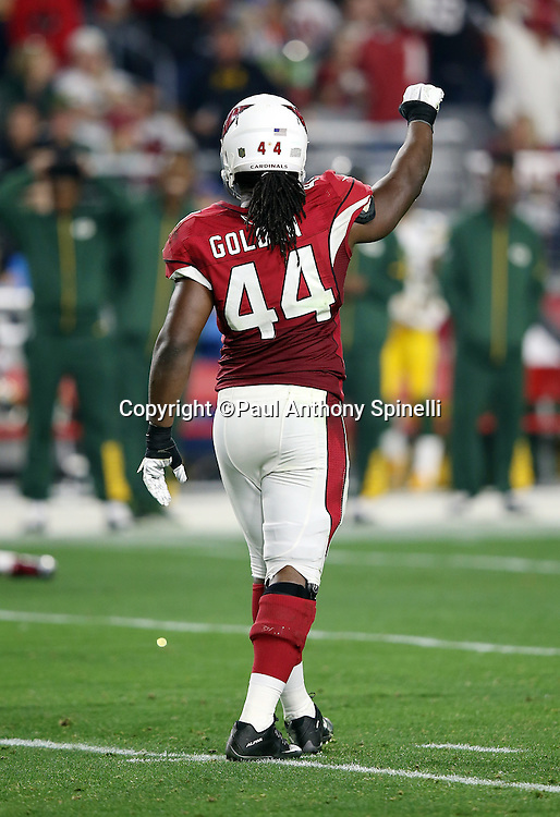 Arizona Cardinals rookie outside linebacker Markus Golden (44) raises his arm in celebration after Arizona Cardinals free safety Rashad Johnson (26) intercepts a third quarter pass at the Green Bay Packers 47 yard line during the NFL NFC Divisional round playoff football game against the Green Bay Packers on Saturday, Jan. 16, 2016 in Glendale, Ariz. The Cardinals won the game in overtime 26-20. (©Paul Anthony Spinelli)