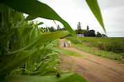 A family, husband and wife, ride bikes with kids in trailers around the farms on Sauvie Island, near Portland, Oregon.