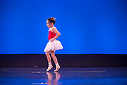 Wellington, NZ. 2 December 2017. Tomorrow, from the Wellington Dance & Performing Arts Academy end of year stage-show 2017. Little Show, Saturday 10.15am. Photo credit: Stephen A'Court.  COPYRIGHT ©Stephen A'Court