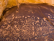 Newspaper Rock State Historic Monument, Utah, USA. The cliffs that enclose the upper end of Indian Creek Canyon are covered by hundreds of ancient Indian petroglyphs (rock carvings), one of the largest, best preserved and accessible groups in the Southwest USA. The petroglyphs have a mixture of human (feet, figures), animal (deer, pronghorn, buffalo, horse), abstract and material forms of uncertain meaning. Starting about 2000 years ago, humans have chipped away the dark natural desert varnish to reveal lighter colored Wingate sandstone beneath.