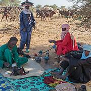 Niger color