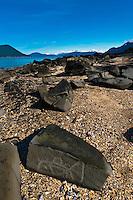 Petroglyph Beach, Wrangell, Southeast Alaska USA