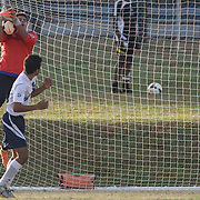 Delcastle keeper Andres Trujillo-Cruz (0) makes a save in the second half during a regular season soccer match between Newark and Delcastle Thursday, Oct. 22, 2015 at Delcastle in Wilmington.