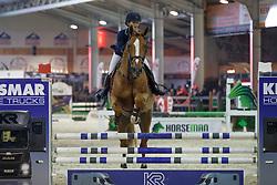Steffen Rachel, BEL, Olympic C<br /> Pavo hengstencompetitie 4 jaar<br /> Hengstenkeuring BWP - Lier 2018<br /> © Dirk Caremans<br /> 21/01/2018