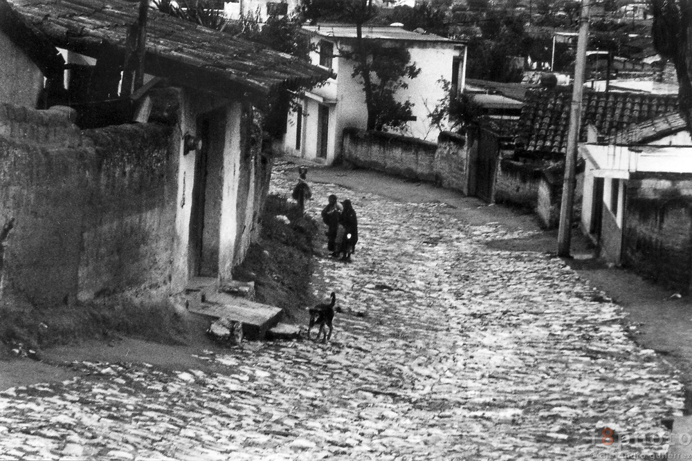 San Miguel Tenextatiloyan is a small Town in the mountain chain of Puebla. The main economic income is the Pottery.