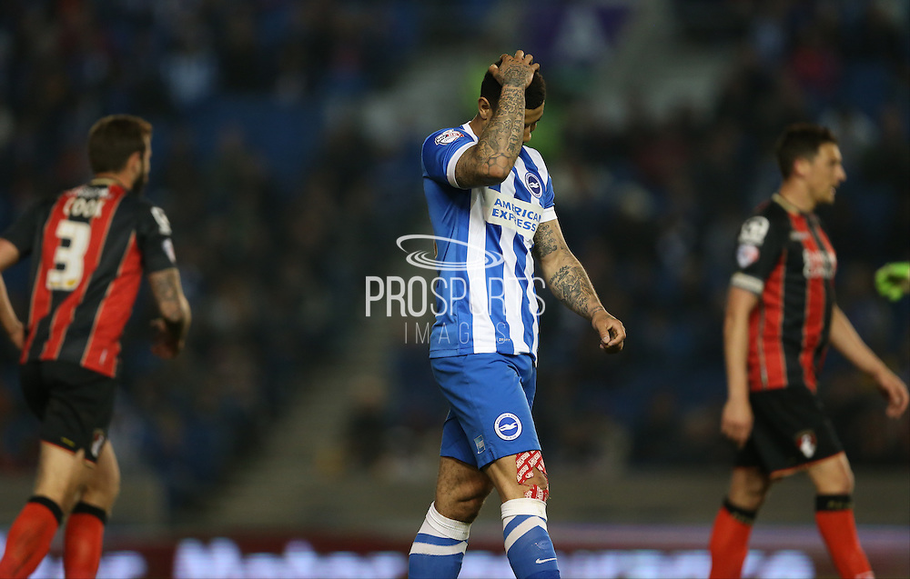 Leon Best, Brighton striker chance during the Sky Bet Championship match between Brighton and Hove Albion and Bournemouth at the American Express Community Stadium, Brighton and Hove, England on 10 April 2015.