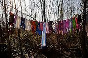 Laundry hangs in trees at the Makish Roma relocation camp near Ada Ciganlia in Belgrade.