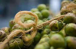 Picture by Mark Larner. Picture shows organic brussel sprouts at KBHff Indre By. 14/03/2012