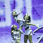 1066_BLACK ICE  - Youth Level 2 Stunt Group