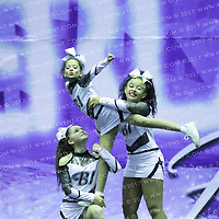 1066_BLACK ICE  - Youth Level 2 Stunt Group