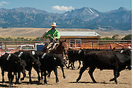 Wilsall Ranch Rodeo, Montana, Team Penning, Rockie Ridge Riders Team, Corby Ward, Crazy Mountains