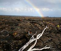 Rainbow over rain soaked lava field.