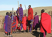 Africa, Tanzania, Maasai an ethnic group of semi-nomadic people February 2006