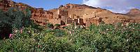 Maroc - Haut Atlas - Vallée du Dadès - Vallée des roses - Village de Tourbist