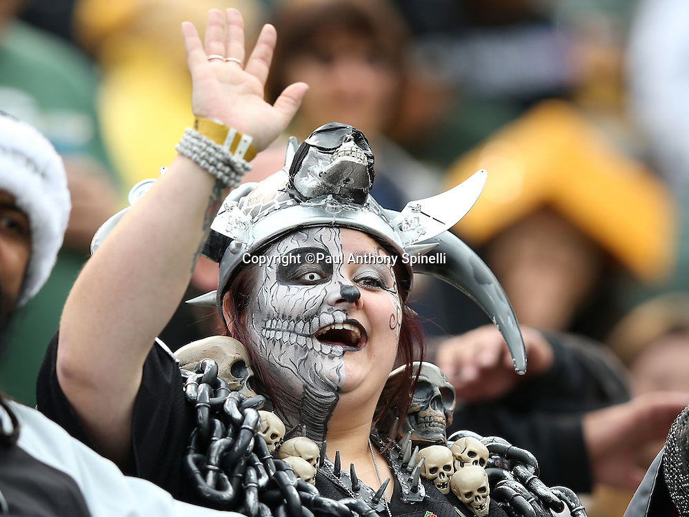 A fan with a painted face wears a wild costume during the Oakland Raiders 2015 week 15 regular season NFL football game against the Green Bay Packers on Sunday, Dec. 20, 2015 in Oakland, Calif. The Packers won the game 30-20. (©Paul Anthony Spinelli)