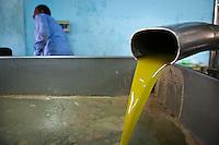 Olive oil processing, Ajloun, Jordan. 2012.