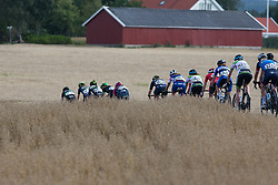 A small group disappears behind a wheat field on Stage 2 of the Ladies Tour of Norway - a 140.4 km road race, between Sarpsborg and Fredrikstad on August 19, 2017, in Ostfold, Norway. (Photo by Balint Hamvas/Velofocus.com)