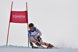 ROTHFUSS Andrea LW6/8-2 GER at 2018 World Para Alpine Skiing World Cup, Veysonnaz, Switzerland
