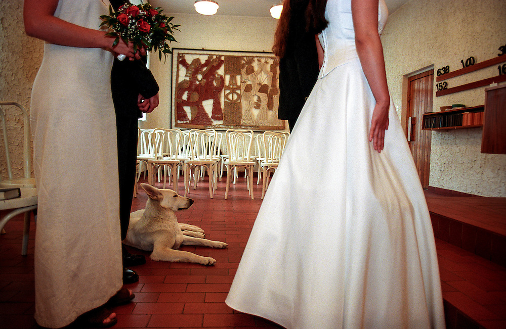 A dog is joining a wedding ceremony in a church in Prague.