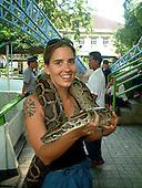 Animals - Snakes