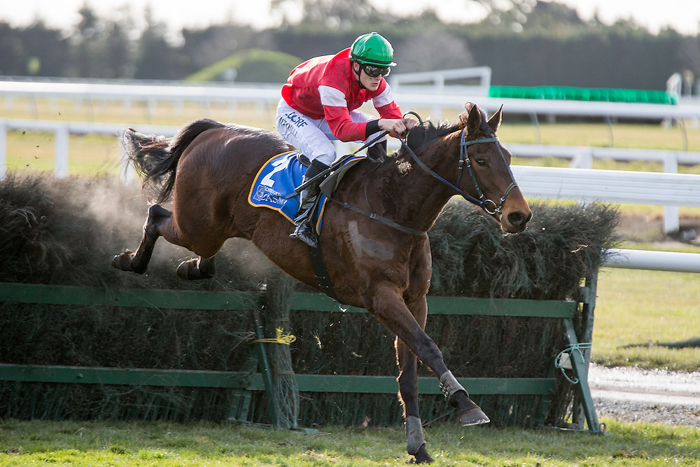 Jockey Michael Mitchell riding High Forty clears the last hurdle to win race 7 141st NZ Grand National Steeplechase at Riccarton Park, Christchuch, New Zealand, Saturday, August 08, 2015. Credit:SNPA / Martin Hunter