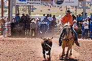 10 SEPTEMBER 2004 - WINDOW ROCK, AZ: Team roping at the All Indian seniors rodeo, open to cowboys more than 40 years old, during the 58th annual Navajo Nation Fair in Window Rock, AZ. The Navajo Nation Fair is the largest annual event in Window Rock, the capitol of the Navajo Nation, the largest Indian reservation in the US. The Navajo Nation Fair is one of the largest Native American events in the United States and features traditional Navajo events, like fry bread making contests, pow-wows and an all Indian rodeo.  PHOTO BY JACK KURTZ