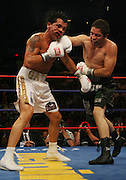 Alfonso Gomez (Black Trunks) hits Arturo Gatti (White Trunks) with a straight right to the head in the 5th Round of there schedule 10 Round Welterweight bout on Saturday Night July 14, 2007  Atlantic City Boardwalk Hall in Atlantic City, New Jersey. Gomez went onto to score a 7th round Knock Out over the former Welterweight Champion.