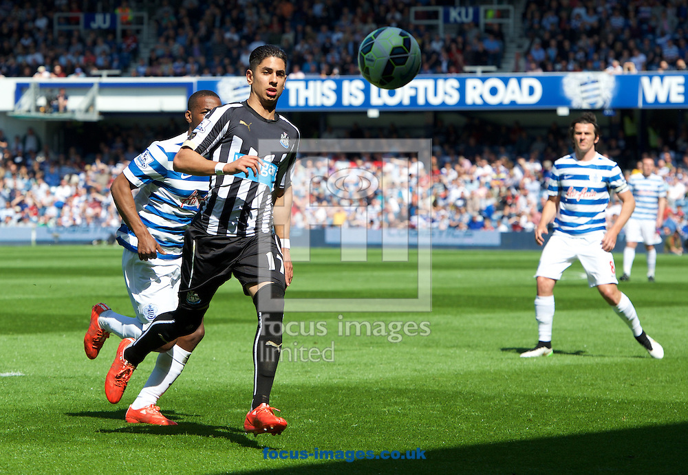 Ayoze Perez of Newcastle United during the Barclays Premier League match at the Loftus Road Stadium, London<br /> Picture by Alan Stanford/Focus Images Ltd +44 7915 056117<br /> 16/05/2015