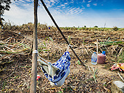 24 JANUARY 2017 - PHRA THAEN, KANCHANABURI, THAILAND: A baby sleeps in a hammock on the edge of a sugarcane field on a sugarcane plantation in Phra Thaen. Thai government  officials recently announced that they plan to float sugar prices later this year or early in 2018. Wholesale prices are currently set by the Cane and Sugar Board, a part of the Industry Ministry, while the Commerce Ministry sets the retail price. Thailand has fixed retail prices of sugar to guarantee a profit for farmers. Thailand is the world's leading exporter of sugar, after Brazil. Thai sugar production is expected to drop by more than three percent because of the lingering drought that crippled agriculture through 2015 and 2016.    PHOTO BY JACK KURTZ