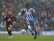 Brighton's Rohan Ince on the ball during the Sky Bet Championship match between Brighton and Hove Albion and Norwich City at the American Express Community Stadium, Brighton and Hove, England on 3 April 2015. Photo by Phil Duncan.