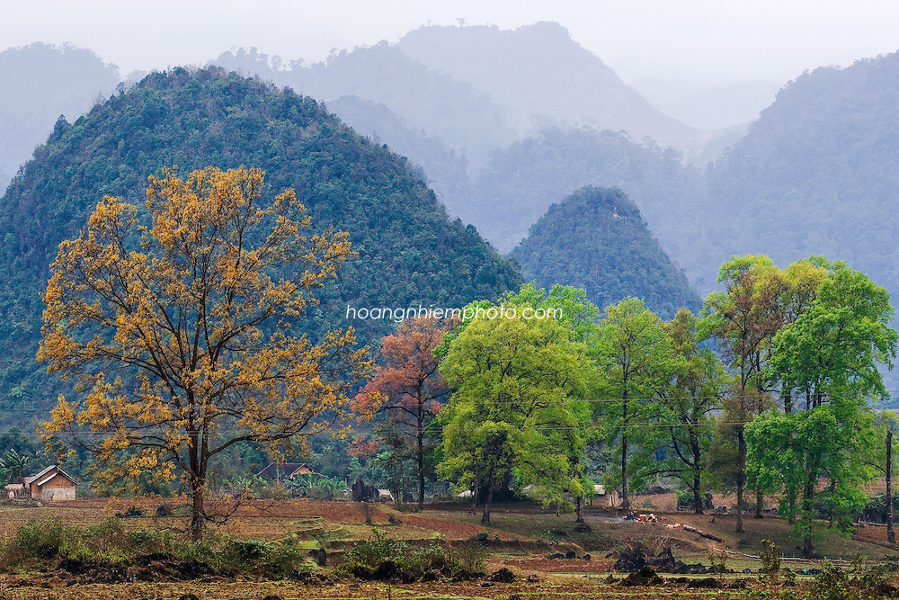 Vietnam Images-landscape-Ha Giang-Stone highland phong cảnh việt nam