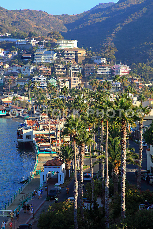 Real Estate on Catalina Island