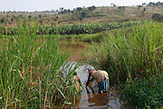 Anastasie Mukagacinya. 60, From Mugorore Village. Collecting water from an off shoot of Akagera river. ( swamp) Juru Sector. Bugesera district...© Zute Lightfoot / Water Aid