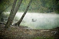 the banks of the Mulberry River in the morning fog in Arkansas