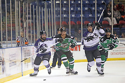 15 November 2013: Dennis Sicard, Peter Cintala , Kyle Watson, Josh Duplantis. Louisiana IceGators at Bloomington Thunder Southern Professional Hockey League (SPHL) at the U.S. Cellular Coliseum in Bloomington Illinois
