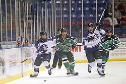 15 November 2013: Dennis Sicard, Peter Cintala , Kyle Watson, Josh Duplantis. Louisiana IceGators at Bloomington Thunder Southern Professional Hockey League (SPHL) at the U.S. Cellular Coliseum in Bloomington Illinois