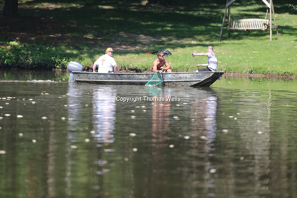 Justin Rakestraw, from left,  dirves the boat as Brian Sandeford and Shane Morris use dip nets to pick up al lthe dead fish that look like dots on the surface of the water of a small lake on Strain Street in Tupelo on Tuesday.